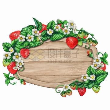 草莓装饰的菱形木板标题框水彩插画png图片免抠矢量素材