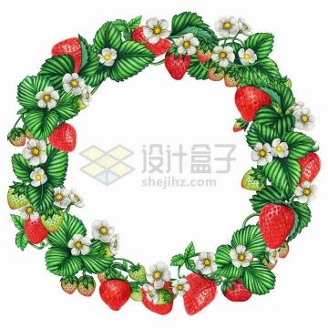 草莓藤蔓装饰的圆形花环水彩插画png图片免抠矢量素材