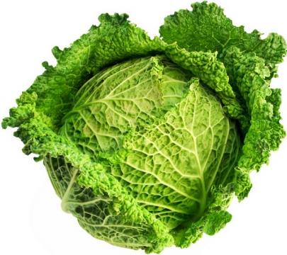 甘蓝菜美味蔬菜100459png图片素材