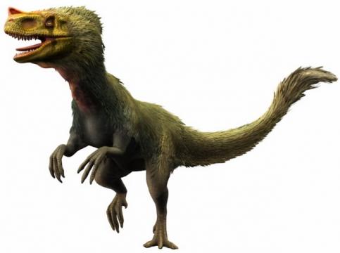 蛮龙带毛肉食性恐龙348412png免抠图片素材