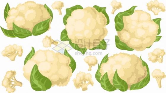 各种花椰菜美味蔬菜png图片素材