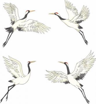 4个正在起飞的彩绘仙鹤丹顶鹤png图片免抠矢量素材
