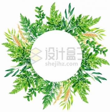 水彩画风格蕨类植物叶子小麦麦穗组成的圆形标题框png图片素材