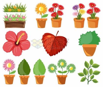 花盆中各种鲜花盆栽树叶等png图片素材