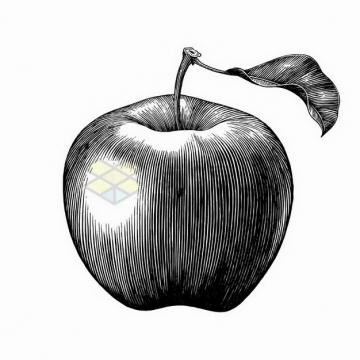 带叶子的苹果美味水果手绘素描插画png图片免抠矢量素材