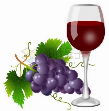 紫色葡萄和高脚杯中的葡萄酒png图片素材