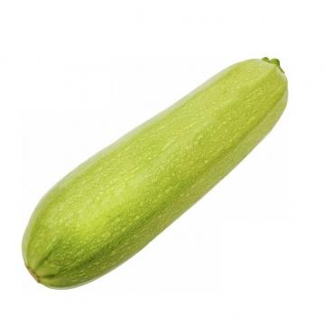 节瓜美味蔬菜297682png图片素材