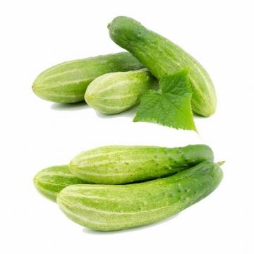 节瓜美味蔬菜797689png图片素材