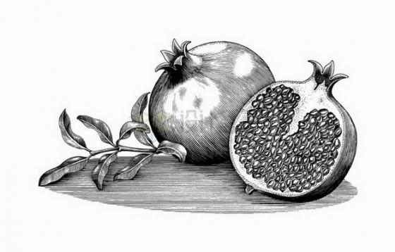 剥开的石榴美味水果黑色线条手绘素描插画png图片免抠矢量素材