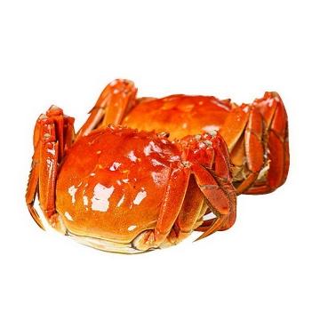 两只煮熟的螃蟹大闸蟹美味河蟹河鲜美食图片免抠素材