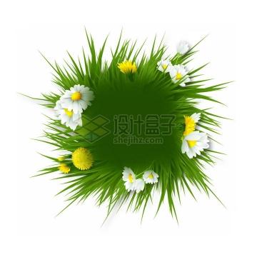 绿色青草和白色黄色的花朵组成的春天文本框标题框png图片免抠素材