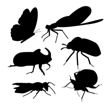 蝴蝶等小昆虫小动物剪影免抠矢量图片素材