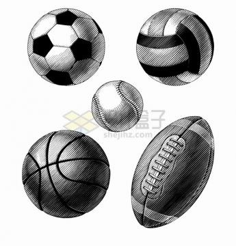 足球排球篮球棒球橄榄球手绘线条插画png图片素材
