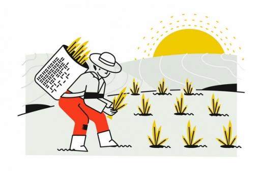 农民在田间插秧手绘插画png图片素材388146