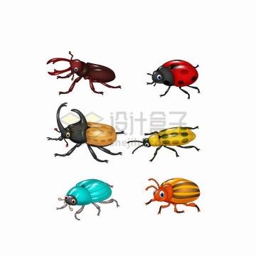 6款卡通锹甲独角仙七星瓢虫等甲壳虫昆虫png图片免抠矢量素材