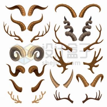 各种山羊角羚羊角牛角鹿角等动物的角png图片素材