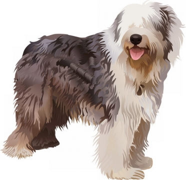 古牧犬手绘插画990739png图片素材
