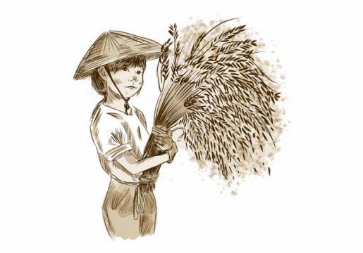 农民抱着收割的稻穗麦穗手绘插画png图片素材579845