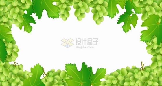 青绿色的葡萄树葡萄和叶子边框png图片素材