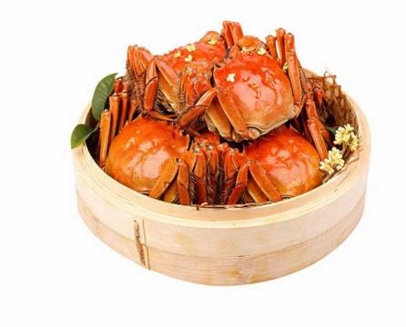 一笼清蒸螃蟹大闸蟹河鲜河蟹美味美食图片免抠素材