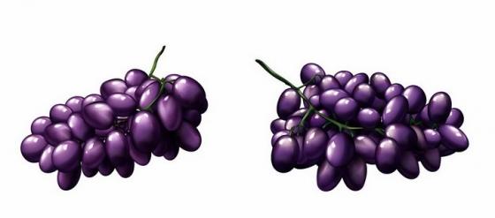 两串紫色葡萄美味水果png图片免抠矢量素材