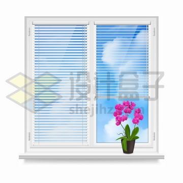 白色窗户上的百叶窗帘和窗台上的花盆png图片免抠矢量素材