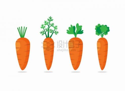 4款带叶子的卡通胡萝卜png图片免抠eps矢量素材