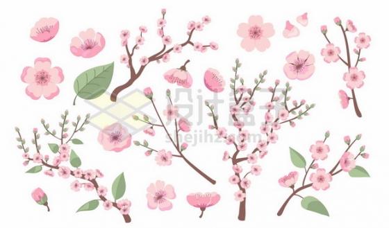 各种枝头上的粉色桃花和花瓣179464png图片素材