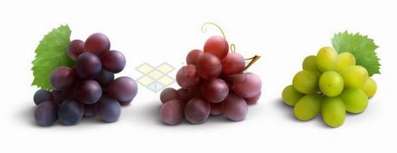紫色红色和青色的葡萄png图片免抠矢量素材