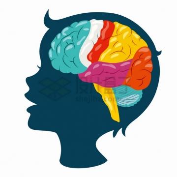 卡通儿童脑袋剪影彩色大脑儿童智力开发png图片素材