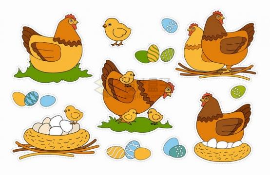 卡通母鸡下蛋和小鸡手绘插画png图片素材