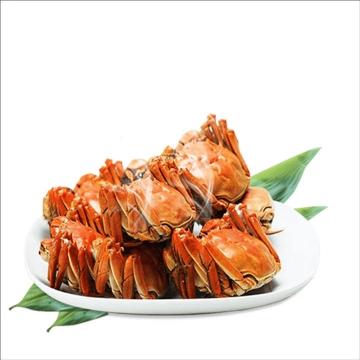 一大盘美味的清蒸大闸蟹螃蟹美食图片免抠素材
