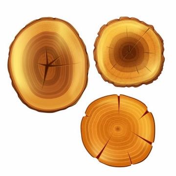 3块大树树干横切面树木年轮png图片免抠矢量素材