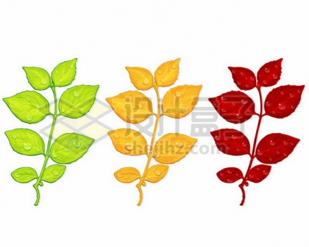 3种颜色的绿色黄色红色树叶769599png矢量图片素材
