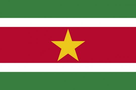 标准版苏里南国旗图片素材