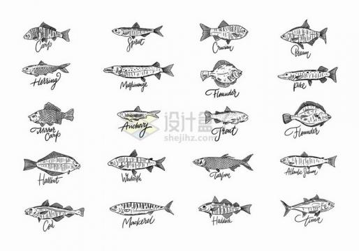 20款线条手绘风格海洋鱼类水产品png图片免抠矢量素材
