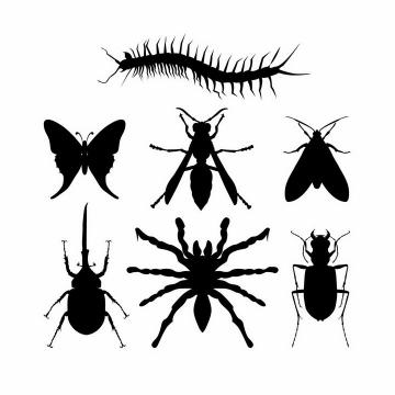 蜈蚣蝴蝶黄蜂蛾子天牛蜘蛛等昆虫剪影
