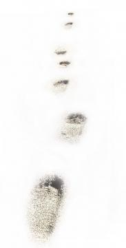 一组沙滩上的脚印图片png免抠素材