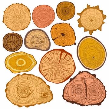 各种形状的大树树干横切面年轮图案png图片免抠矢量素材