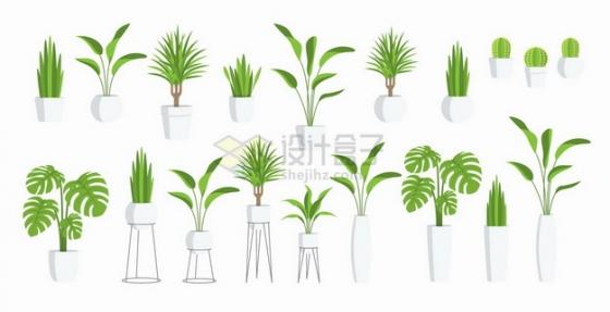 绿萝发财树君子兰文竹等盆栽植物png图片素材