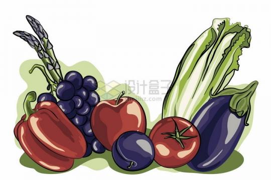 灯笼椒蕨菜西红柿生菜茄子美味蔬菜彩绘插画png图片免抠矢量素材