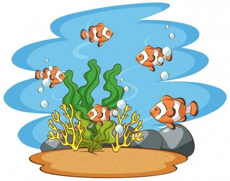 海底的珊瑚海带和卡通小丑鱼图片免抠矢量素材