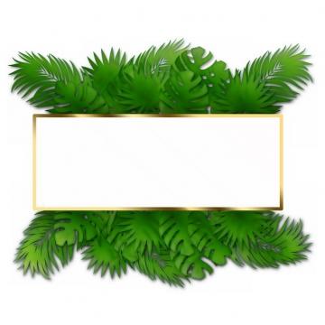 热带绿叶树叶装饰的金色边框749402png图片素材