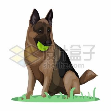 叼着球的黑背狗狗宠物狗彩绘插画png图片免抠矢量素材