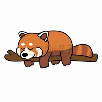 趴在树枝上睡觉的小熊猫png图片免抠矢量素材