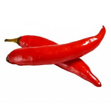 两根小辣椒红辣椒小米椒美味调料蔬菜559004图片素材