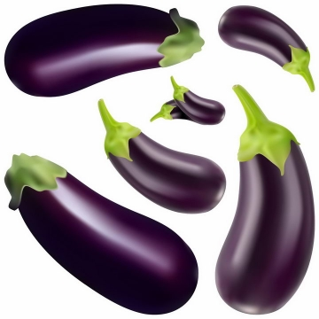 各种紫色的茄子美味蔬菜png图片免抠EPS矢量素材