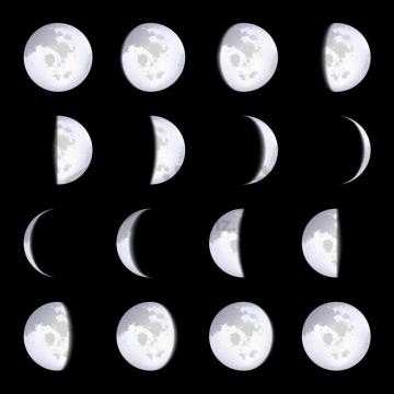 逼真的月相变化图966470png矢量图片素材