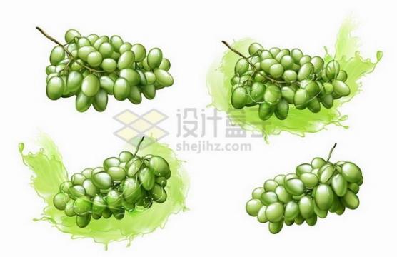 混合着绿色果汁的青葡萄提子937577png矢量图片素材