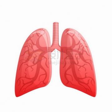卡通红色的人体器官组织肺部世界肺炎日png图片免抠矢量素材